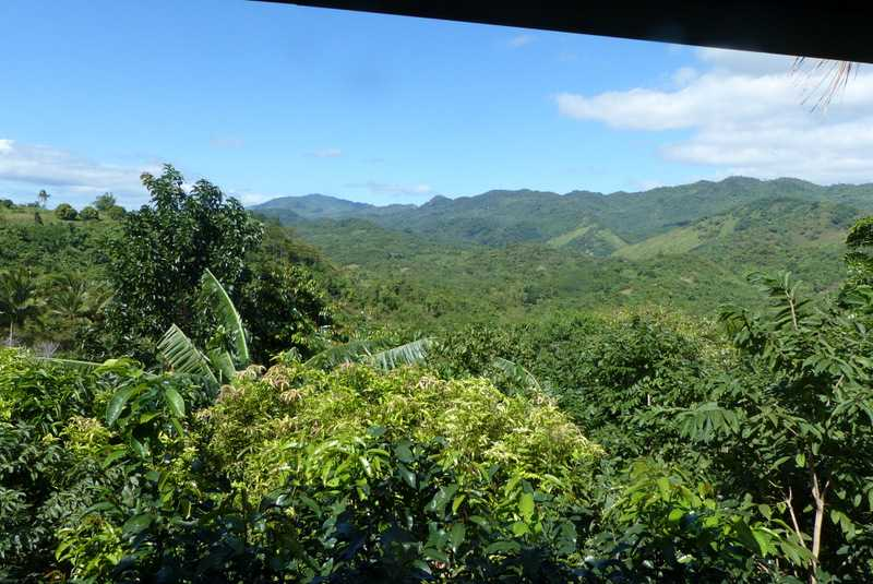 The view from the meeting room at lilok farm sakahang lilok tanay